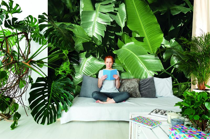 erfurt juicywalls pro 2018 aus digitalen vorlagen wird. Black Bedroom Furniture Sets. Home Design Ideas